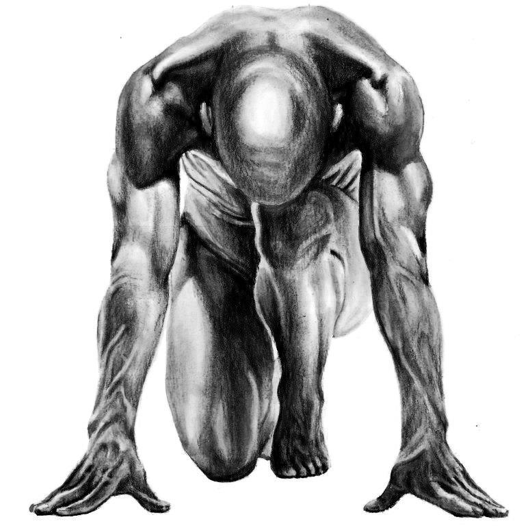 Anatomic study (21)